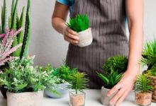Photo of Вещи, которые женщинам лучше убрать изквартиры