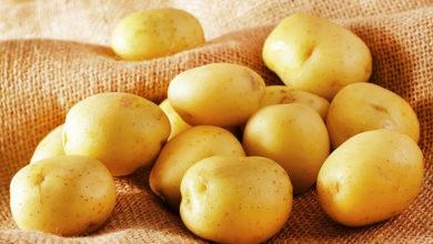 Photo of Почему нельзя есть сырую картошку